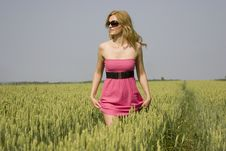 Free Sexy Girl In A Wheat Field Stock Photo - 14725160