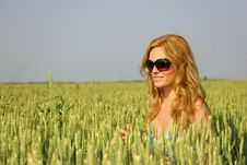 Free Sexy Girl In A Wheat Field Stock Photo - 14725200