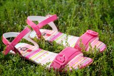 Free Pair Of Pink Sandals Stock Image - 14725441