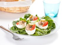 Free Salad Of Letuce Egg Tuna And Olive Stock Photos - 14725453