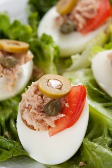 Free Salad Of Letuce Egg Tuna And Olive Royalty Free Stock Images - 14725459