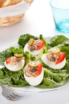 Free Salad Of Letuce Egg Tuna And Olive Stock Image - 14725471