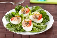 Free Salad Of Letuce Egg Tuna And Olive Royalty Free Stock Images - 14725519