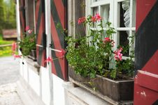 Free Window With Flowers Stock Photos - 14726733