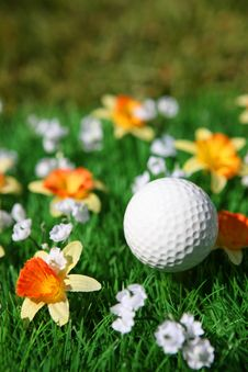 Free Golf Ball Stock Photos - 14727593