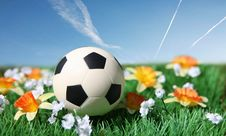 Free Soccer Ball Stock Images - 14727614