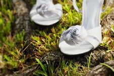 Free Wedding Shoes Stock Images - 14729904