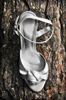 Free Wedding Shoes Stock Photo - 14729920