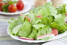 Free Green Salad Stock Photography - 14731502