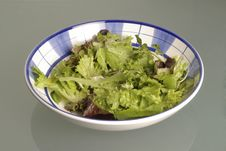 Free Salad Bowl Stock Image - 14733401