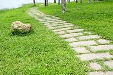 Free Road In Garden Royalty Free Stock Images - 14735679