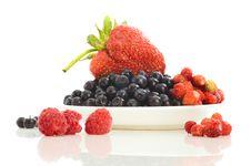 Free Summer Fruits Still-life Stock Photo - 14737420