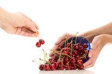 Cherries In Hands Royalty Free Stock Photos