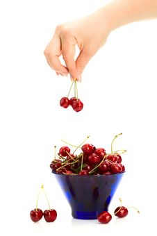 Free Cherries In Hand Stock Images - 14737894