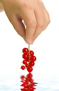 Free Red Currant In Hand Royalty Free Stock Image - 14738876