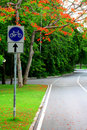 Free Bicycle Way Stock Photo - 14741950