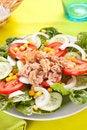 Free Salad Tuna Tomato Corn And Onion Royalty Free Stock Image - 14742936