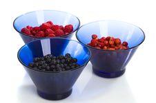 Free Summer Fruits Royalty Free Stock Photos - 14741488