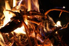 Free Campfire Stock Photography - 14741982