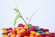 Drug Candy Royalty Free Stock Photography