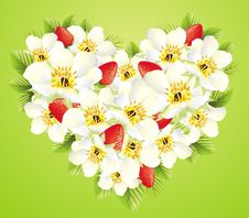 Free Floral Illustration With Strawberry Royalty Free Stock Photography - 14745477