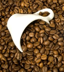 Free Coffee Cup Royalty Free Stock Photos - 14745738