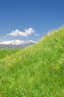 Free Spring Landscape Stock Image - 14745981