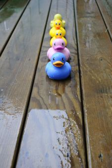 Free Duckies In The Rain Royalty Free Stock Image - 14746136