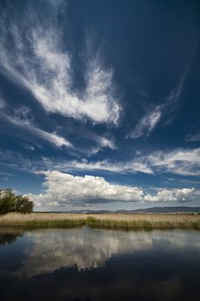 Free Protected Lagoons In Spain Royalty Free Stock Photo - 14746165