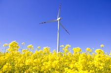 Free Windmill Conceptual Image. Stock Photo - 14748370
