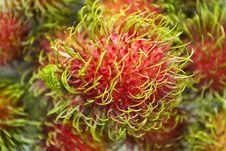 Free Thai Rambutan Fruit Royalty Free Stock Images - 14748719