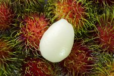 Free Thai Rambutan Fruit Stock Photos - 14748733