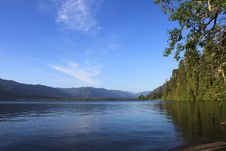 Free Lake Quinault Stock Photos - 14748863
