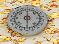 Free Compass Isolated On The Map Stock Photography - 14752302