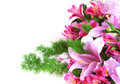 Free Bunch Of Flowers Royalty Free Stock Photo - 14758245