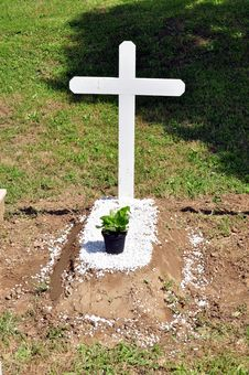 Free Little Tomb,white Cross Royalty Free Stock Image - 14753786