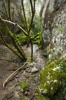 Free Waterfall In Autumn Stock Photo - 14753890