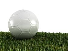 Free Ball On Grass Stock Images - 14754284