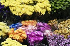 Free Flower Stall Royalty Free Stock Photography - 14756197