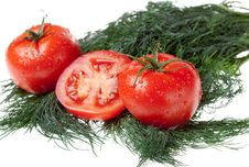 Free Juicy Tomatoes On Bunch Of The Dill Royalty Free Stock Image - 14756266