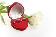 Free Wedding Rings Stock Photos - 14756553