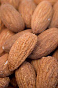 Free Almonds Prunus Dulcis Royalty Free Stock Image - 14757386