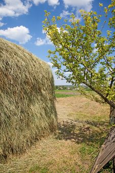 Free Haystack Royalty Free Stock Photography - 14757487