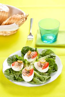 Free Salad Of Letuce Egg Tuna And Olive Stock Image - 14757521