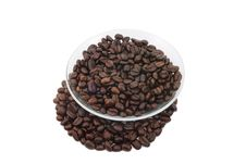 Free Coffee Beans On A Plate Royalty Free Stock Photos - 14757758