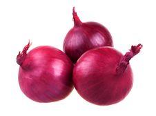 Fresh Red Onion Bulbs Stock Image