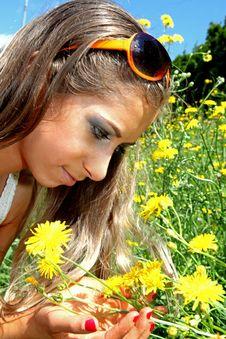 Free Flower Stock Photo - 14759270