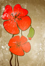 Free Poppies On The Old Grunge Texture Stock Image - 14761901