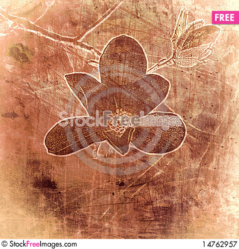 Free Vintage Floral Background Royalty Free Stock Photography - 14762957