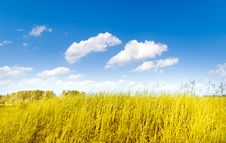 Free Beautifully Landscape Stock Photos - 14760073